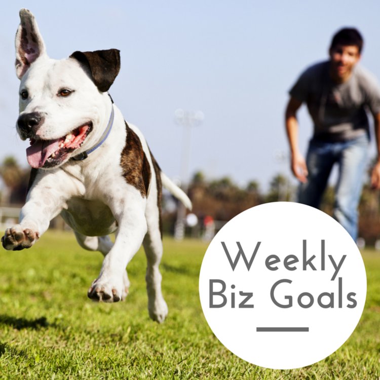 Weekly Business Goals: Dog Trainers, Dog Walkers, Dog Sitters & Veterinarians