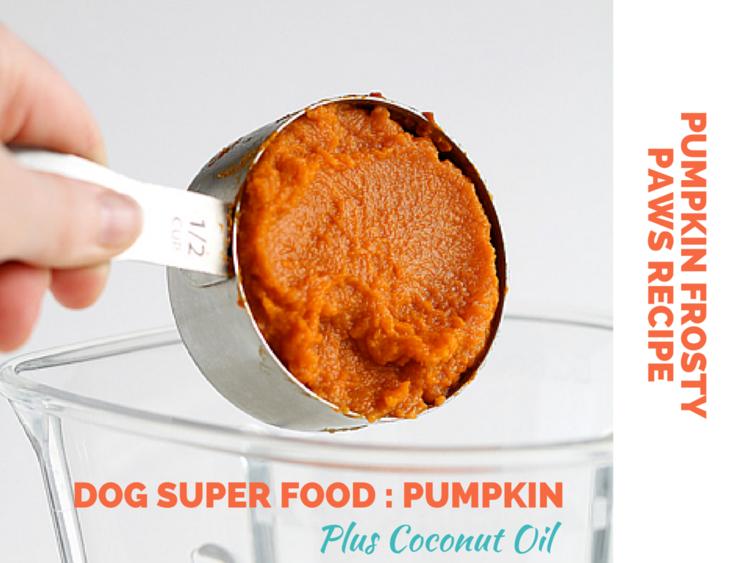 Pumpkin Frosty Paws Dog Treat Recipe