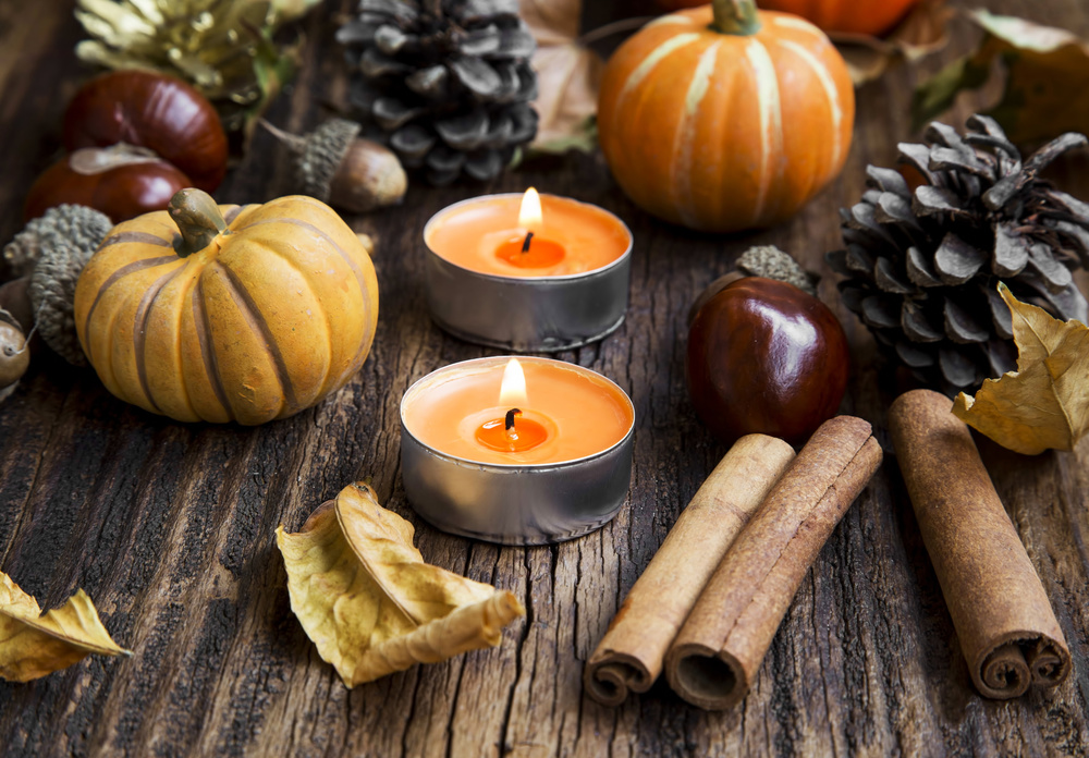 Pumpkin Healing Properties for Dogs And Their People + Recipe